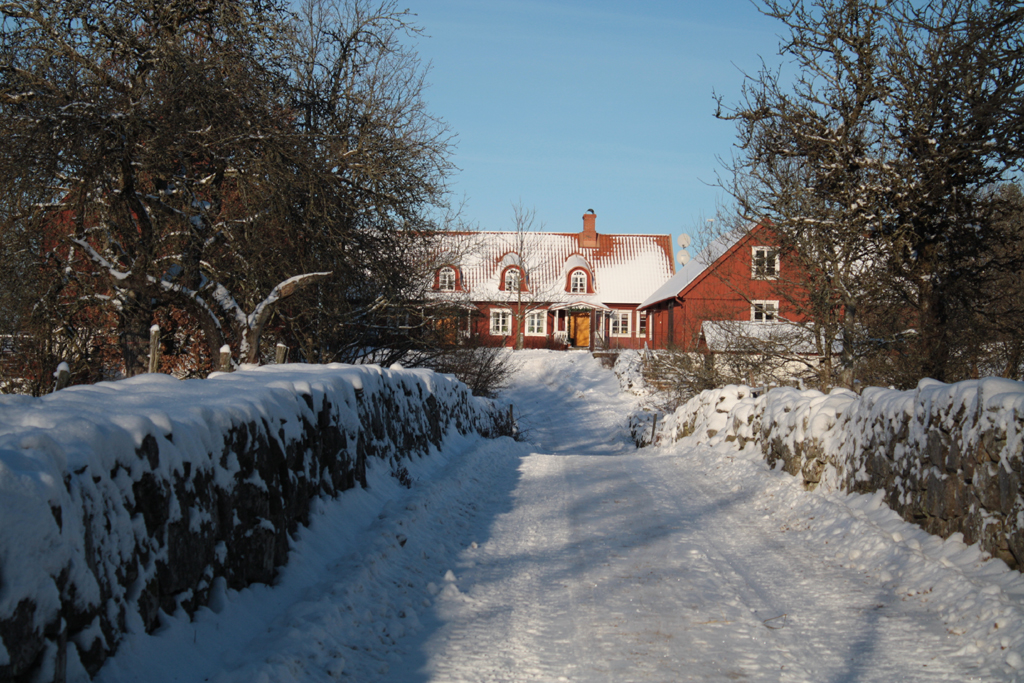 Bosagården-vinter
